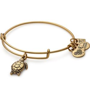 Turtle Charm Bangle - Rafaelian Gold Finish CBD16STRG