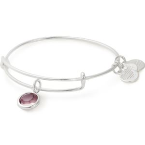 June Birthstone Bangle - Light Amethyst Crystal A19EB45SS