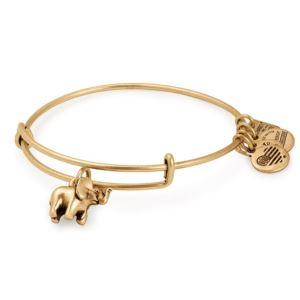 Elephant Charm Bangle - Rafaelian Gold Finish CBD17EFRG