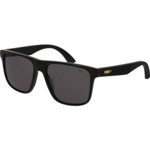 Men's Acetate Sunglass - Black PU0104S-001